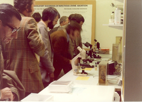 1977 Delegates in the laboratory learning about the techniques used for the diagnosis of abortion in sheep