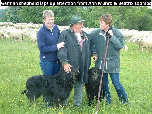 German shepherd laps up attention from Ann Munro and Beatrix Loombs